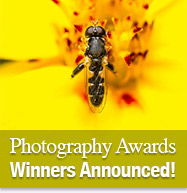 Photography Awards - Winners Announced!